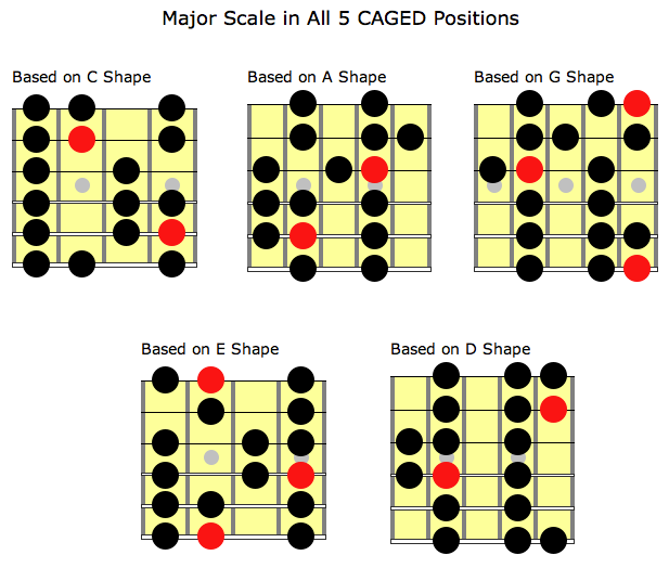 Caged System The Major Scale